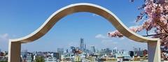 Spring Cityscape (Human-Faced Bun w/ Honey Pudding) Tags: yokohama yamate skyline cityscape blue sky cherry blossom building tower urban hill
