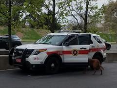 Columbus Fire K9-2 (MCN13) Tags: columbus fire k9 canine bomb squad