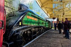 Union On Stand (A.R. Live) Tags: locomotive steamtrain a4 sirnigelgresley unionofsouthafrica haymarket lner aberdeen glasgow edinburgh eastlancashirerailway bury lancashire pacific train