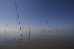 Silence (Mighty Badaboom) Tags: pole stange sea meer nordsee northsea silence stille ruhe landscape landschaft outdoor drausen blue blau water wasser