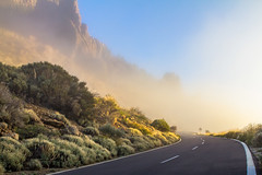 Fog on the mountain road (CAHKT) Tags: canary caution close danger fog foggy highways island islands monumental mountains nature path road rocks round signs spain stone streamers sun suspense teide teneriffe travel visibility volcano