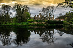 Abbey Reflections (Michael_Barnes) Tags: finchale abbey ruins river wear calm water dark moody reflection landscape buildings green trees woods forest colours sky grass dusk stone old northeast north outdoors nature photography crossing mirrored mirror