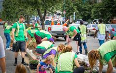 2017.04.29 Vermont Ave Garden-Work Party Washington, DC USA 4189