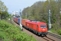 Nex miesto Rex (Nexak) Tags: train slovakia nex intermodal container transport rail cargo carrier er20 2016 obb siemens