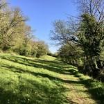 A country walk in Devon thumbnail