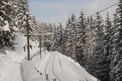 Grtschalp-Murren Rail (webeagle12) Tags: mountain snow mountains alps switzerland europe swiss rail railway valley berne bernese berneseoberland oberland mannlichen murren susse nikond90 1685mm