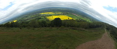 Abstract Panorama (GaseousClay1) Tags: above uk england abstract nature yellow landscape outdoors countryside spring angle natural outdoor unique horizon country hill fromabove vegetation unusual amusing lookingdown curve hillside bizarre swirly springtime