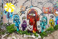 Baylor Street Murals (Viajante) Tags: streetart art wall austin graffiti us mural texas unitedstates