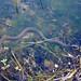 Plain-bellied Watersnake