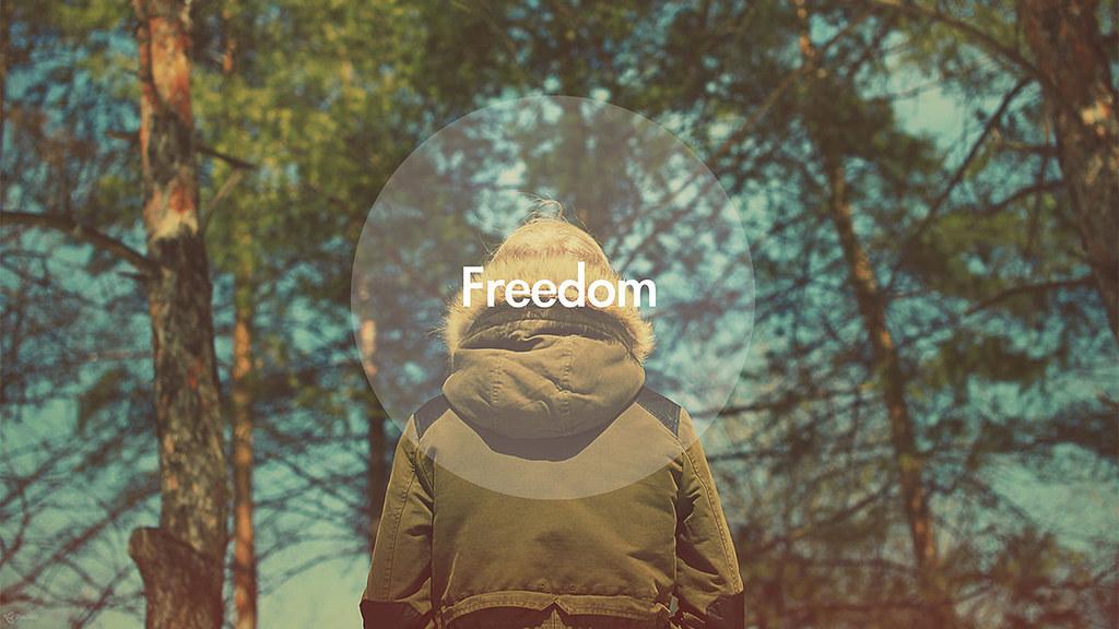 freedom_by_zim2687-d5zrv8n