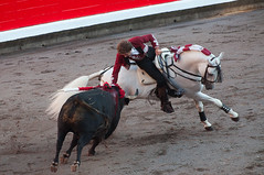 Rejoneo5 (Ferchu65) Tags: espaa naturaleza caballos europa bilbao lugares evento famosos euskadi espectculos rejoneo temas rejoneadores protagonista animalesdomsticos pablohermosodemendoza torodelidia arteculturayespectaculos plazadetorosdevistaalegre corridaderejonesferadebilbao2013
