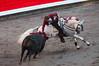 Rejoneo5 (Ferchu65) Tags: españa naturaleza caballos europa bilbao lugares evento famosos euskadi espectáculos rejoneo temas rejoneadores protagonista animalesdomésticos pablohermosodemendoza torodelidia arteculturayespectaculos plazadetorosdevistaalegre corridaderejonesferíadebilbao2013