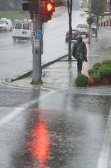 Don't Walk (annburlingham) Tags: street red plants reflection green cars wet rain walking person one trafficlight mainstreet hand pedestrian stop winner crosswalk perry smalltown westernnewyork wyomingcounty tcf sidewalkshot thechallengefactory ultimategrindwinner