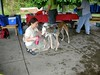 GreyhoundPlanetDaySept132009005