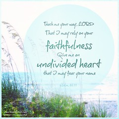 Lord, please give me an undivided heart. #this #psalm86:11 #onlyjesus