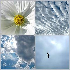 Sept. 11, 2001  -  We remember. (Bennilover) Tags: sky newyork sadness skies remember worldtradecenter honor tragedy heroes bravery deaths sept112001