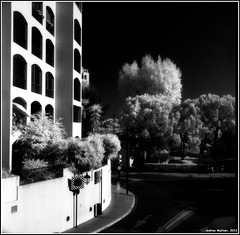 Monaco. Yashica-B,  EFKE IR820+IR750 filter. (Andrey Maltsev) Tags: bw holiday 120 6x6 film canon ir monaco scan 120film scanned infrared efke bwfilm middleformat 8800 blackandwhitefilm irfilm yashicab ir820 efkeir820 canon8800f ir750filter holiday0913