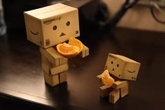 2012-02-26 21-18-48 (Ammon Lin) Tags: danbo  danboard
