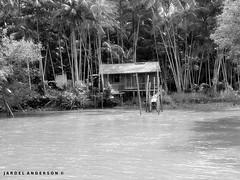 Ribeirinho (Jardel Anderson) Tags: rio par paisagens beira cotijuba beiradorio