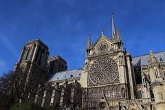 Notre-Dame de Paris (StephanExposE) Tags: sky paris france church seine canon cathedral notredame cathdrale ciel vitrail 1855mm notre dame glise 600d stephanexpose