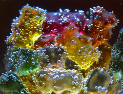 Bubbly Jellies ((Virginie Le Carré)) Tags: studio jellies couleurs bulles bubbly bonbons transparence yellowred jaccuzzi flickr12days