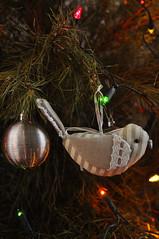 Not A Partridge, Not A Pear Tree (Smith-Bob) Tags: christmas xmas tree pinetree pine festive real hope lights peace decoration melbourne christmastree give tradition fairylights xmastree sillyseason festiveseason