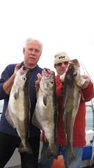 """FISHING Bass & Pollock (Including Record) 010 • <a style=""""font-size:0.8em;"""" href=""""http://www.flickr.com/photos/113772263@N05/11834489496/"""" target=""""_blank"""">View on Flickr</a>"""