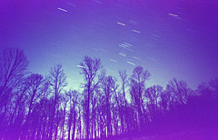 The Lost Star Trail (Radical Retinoscopy) Tags: longexposure nightphotography trees tree film analog iso800 star minolta kodak pennsylvania wideangle oldschool pa nightsky startrails startrail 19mm 800speed kodakgt800 800speedfilm gt800