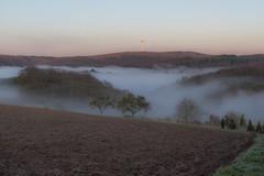 IMG_3237.jpg (budbrain) Tags: autumn trees bw fog canon eos landscapes day herbst josef 7d sw dslr landschaft bume burg westerwald bendorf sayn waldesch sejrek budbrainde
