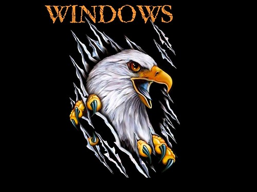 eaglewindows