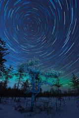 Startrails - Pilpasuo, Oulu (Janne Herva) Tags: winter sky nature night landscape star swamp stacking talvi maisema luonto yö taivas suo tähdet kuvakooste