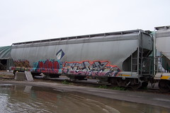 ADMX 80019 A-End Ottawa, Ontario Canada 11032008 ©Ian A. McCord (ocrr4204) Tags: ontario canada cn wagon kodak ottawa traincar pointandshoot mccord cnr canadiannational cnrail walkley z740 freightcar walkleyyard ianmccord ianamccord