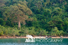 Fishing Boats at Anchor (Altai World Photography) Tags: trees boats island islands coast fishing asia cambodia sihanoukville south east jungle anchor southeast docked koh khm kou rong preahsihanouk sanloem