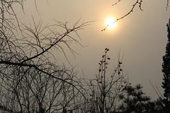 Beijing smog (Ib Aarmo) Tags: china sun smog bejing