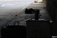 Untitled (angie.qs) Tags: street urban blackandwhite streetart color art blancoynegro colors graffiti calle mural bogota paint 26 caps creative aerosol pintura calle26 bogotacolombia bogotagraffiti la26