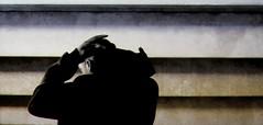 ASICS Tiger (jens.schommer) Tags: gelkayanotrainerknit asicstiger asics tigerknit theathletesfoot sportwithstyle attitudeapproved sneakers sneaker trainers gelkayano gel fashion shoe shoes kicks thewordonthefeet kingoftrainers complexsneakers selektberlin highsnobiety thisisberlin tib turnschuhe schuhe sportschuhe berlin weareallone event specialevent präsentation produktpräsentation sport