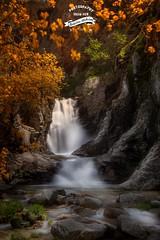Cascada del Purgatorio (Borislav Aleksiev) Tags: cascada spain water stone river orange white tree nature nikon