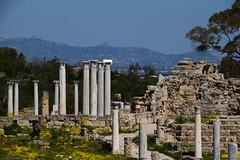 DSC_0235 (mark.greefhorst) Tags: cyprus northerncyprus salamis ancientworld roman