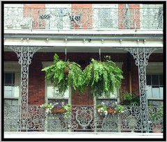 New Orleans LA ~ Pontalba Buildings ~ Historic ~ Balcony (Onasill ~ Bill Badzo) Tags: cuba newyork usa new orleans la louisiana pontalba buildings cast iron balcony antebelum onasill nrhp historic french quartesr architecture landmark flower planters