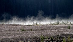 Early Morning Mist, Icefields Parkway, Alberta (Joseph Hollick) Tags: alberta mist icefieldsparkway