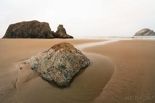 Rocks & Patterns @ the beach...
