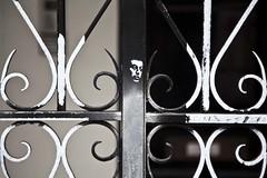 5 bis, rue de Verneuil (Gerard Hermand) Tags: 1703197167 gerardhermand france paris canon eos5dmarkii formatpaysage sergegainsbourg rue art street portrait peinture paint bombe spray noir black blanc white grille fence fer forgé wrought iron