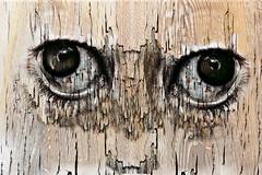 La saggezza dell'età (Zz manipulation) Tags: art ambrosioni zzmanipulation pensieri occhi tempo