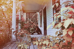 (emmakatka) Tags: abandoned house derelict decay alone woman portrait self red nature leaves poison ivy creepy dark porch emmakatka northdakota prairie