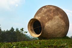 Blossom Hydel Park - Munnar (Prasad.T.R :-)) Tags: blossom hydel park munnar prasadclick prasad prasadphotography prasadramachandranphotograpy
