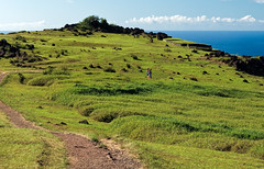 On the way out (LeftCoastKenny) Tags: chile easterisland isladepascua day18 orongo grass rocks hill pacificocean rapanuinationalpark