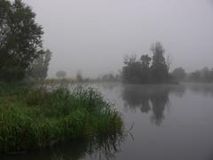 fogg (Darek Drapala) Tags: fogg nature water waterscape green reflection reflects panasonic poland polska panasonicg5 lumix light landscape