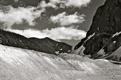 Near Angel Glacier, Jasper National Park, Canada (leo_li's Photography) Tags: parcnationaljasper jaspernationalpark 黑白 bw thecanadianrockies 艾伯达省 艾伯达 冰河 glacier alberta canada 加拿大 亞伯達省 canadianrockymountains rockymountains 洛磯山脈 angelglacier parc national jasper 亞伯達 艾伯塔省 艾伯塔