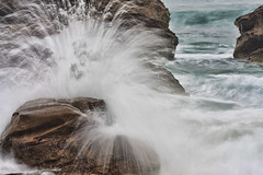 Splash (dicktay2000) Tags: canonef70300mmf456isusm newcastlesundancers ©richardtaylor2012 40d australia nsw redhead 20120121img1502