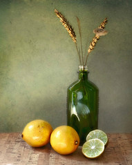 Les citrons (Through Serena's Lens) Tags: 52stilllifes acid ácido lemons yellow texture fruit stilllife lime 7dwf
